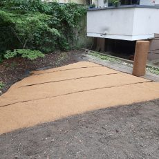 Coconut mats for erosion control