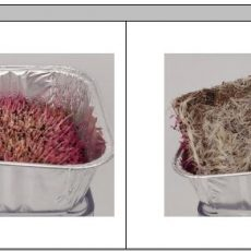 Microgreen coco mat
